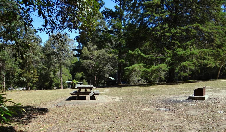 Cutters Camp campground - Stayed