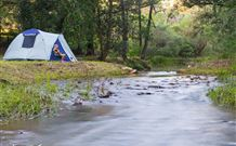 Nymboida Camping  Canoeing - Stayed