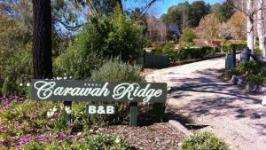 Carawah Ridge Bed and Breakfast - Stayed