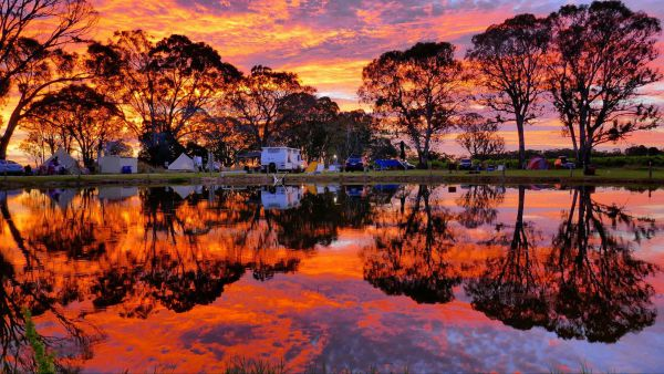 Coonawarra Bush Holiday Park - Stayed