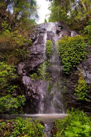 Nimbin Waterfall Retreat - Stayed