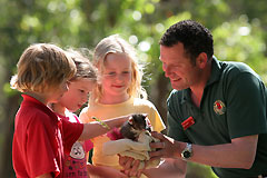 Cleland Wildlife Park - Stayed