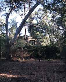 Ghost House Walk Trail Yanchep National Park - Stayed