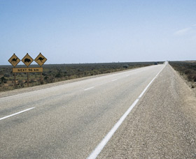 Eyre Highway - Stayed