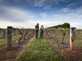 Coonawarra Wineries Walking Trail - Stayed