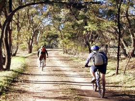 Bike About Mountain Bike Tours And Hire - Stayed