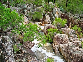 Crows Nest National Park - Stayed