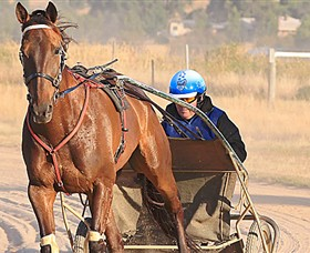 Ballarat  District Trotting Club - Stayed