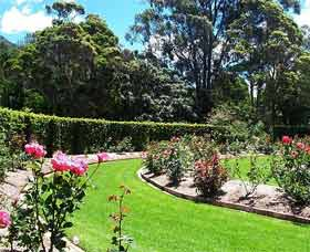Wollongong Botanic Garden - Stayed
