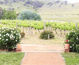 Brindabella Hills Winery - Stayed