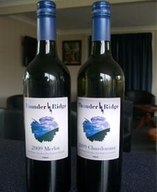 Thunder Ridge Wines - Stayed