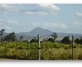 Ironbark Ridge Vineyard - Stayed