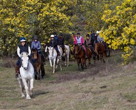 Burnelee Excursions on Horseback - Stayed