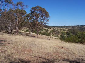 Onkaparinga River National Park - Stayed