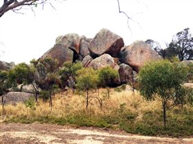 Mount Boothby Conservation Park - Stayed