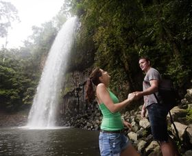 Millaa Millaa Falls - Stayed