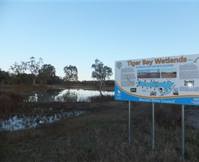 Tiger Bay Wetlands - Stayed