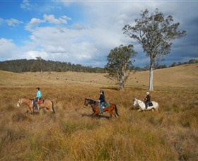 Chapman Valley Horse Riding - Stayed