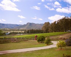 Catherine Vale Wines - Stayed