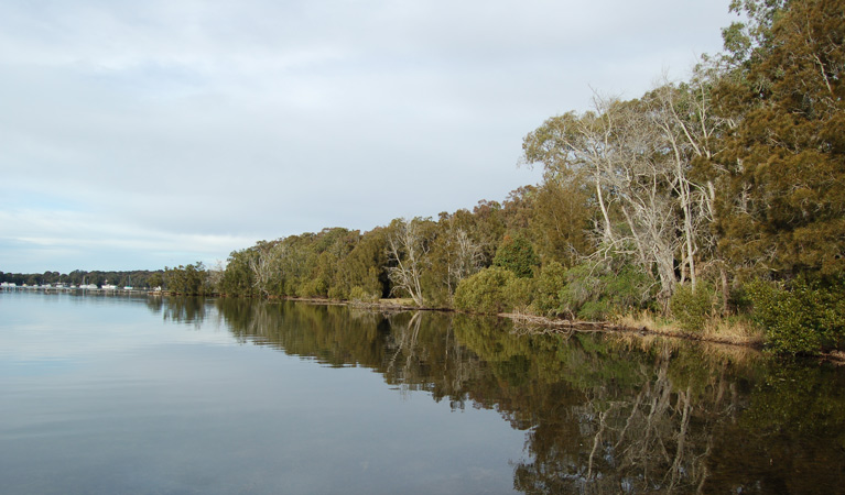 Lake Macquarie State Conservation Area - Stayed