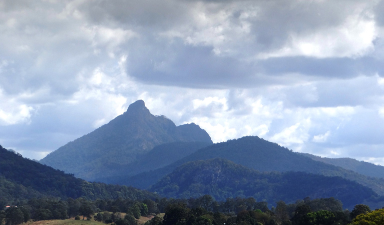 Wollumbin National Park - Stayed