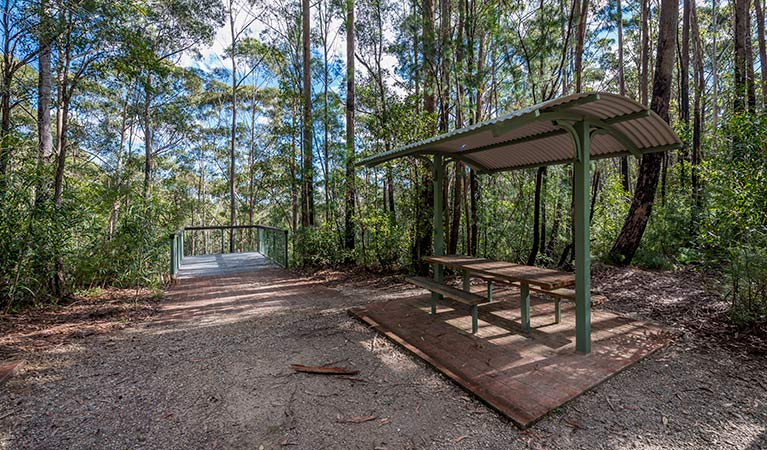 Big Nellie lookout and picnic area - Stayed