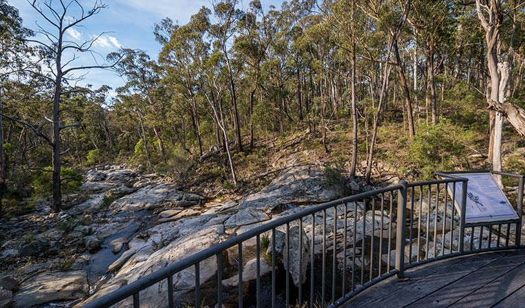 Myanba Gorge walking track - Stayed