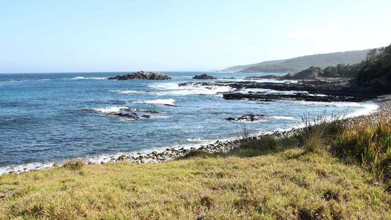 Mimosa Rocks National Park - Stayed