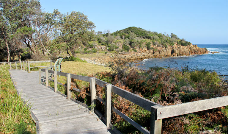 Mimosa Rocks walking track - Stayed