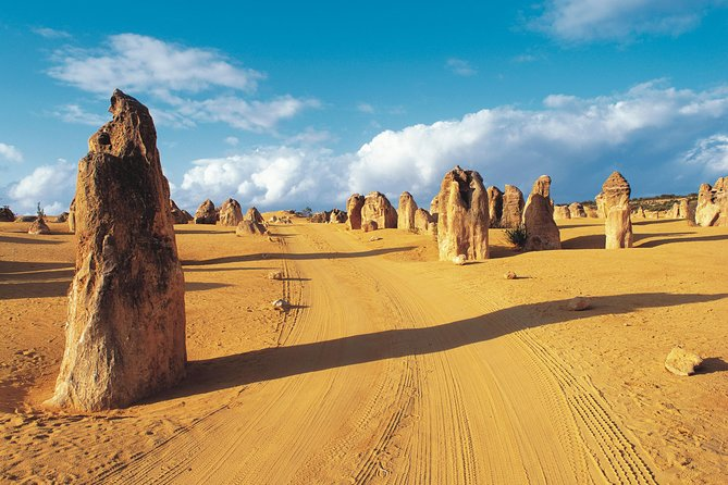 Pinnacles Desert Koalas and Sandboarding 4WD Day Tour from Perth - Stayed