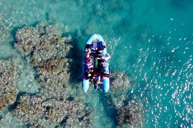 Glass-bottom boat tour with Whitehaven Beach - Stayed