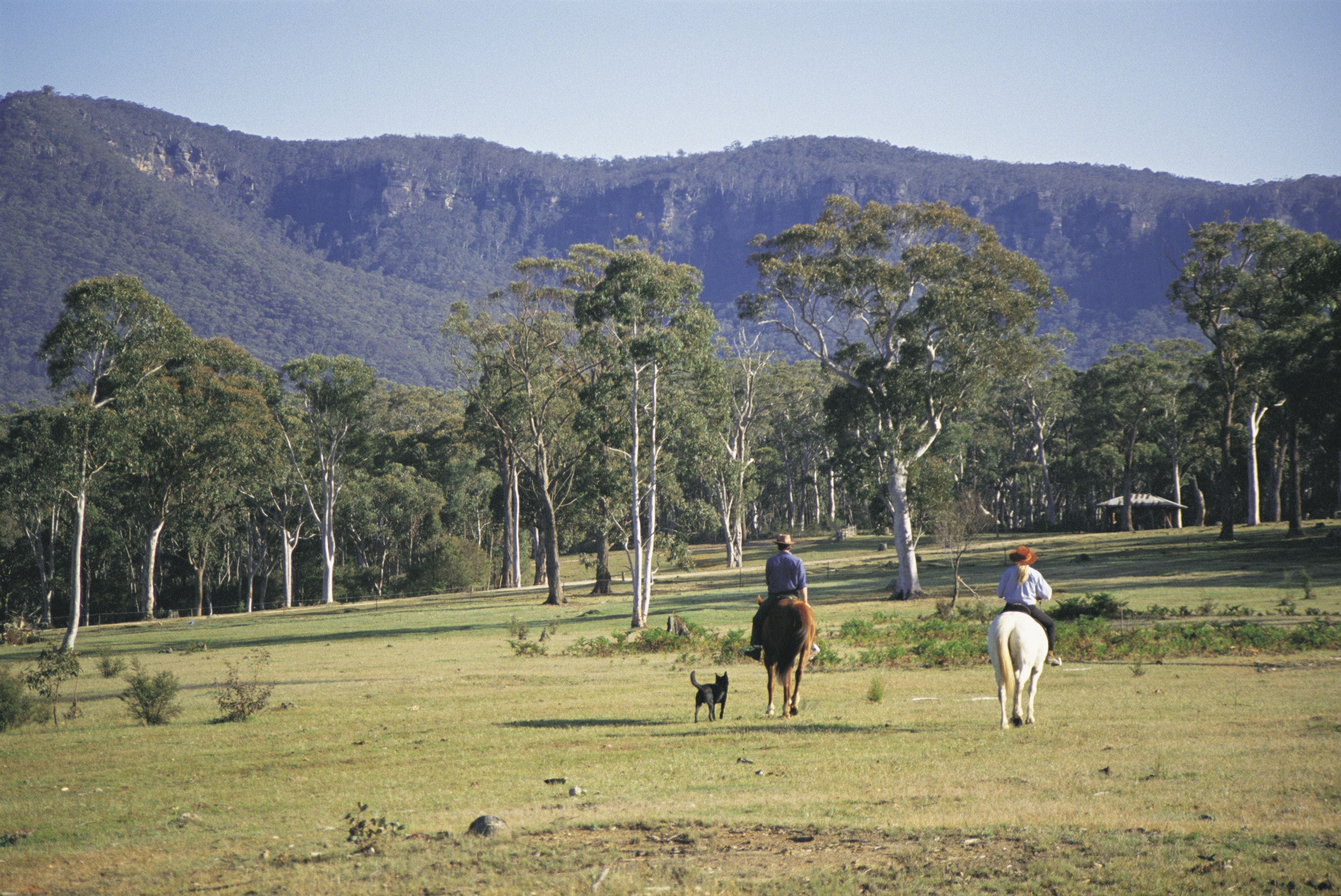 Megalong Valley - Stayed