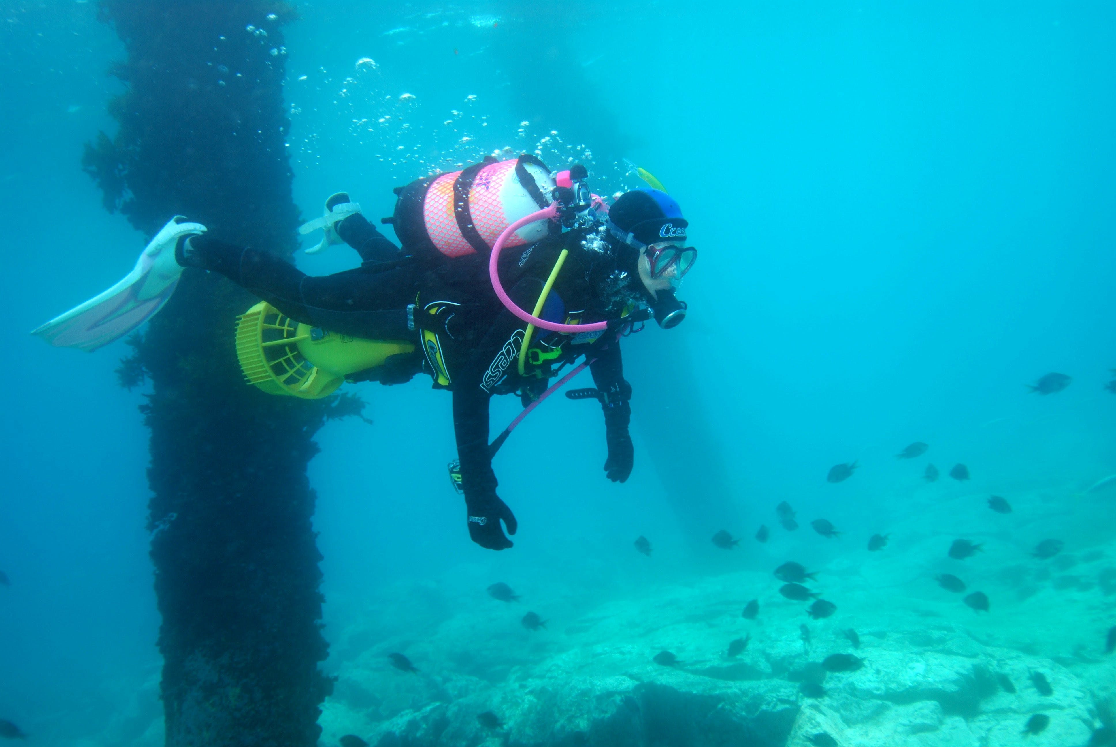 Shellharbour Scuba  and Photography Centre - Stayed