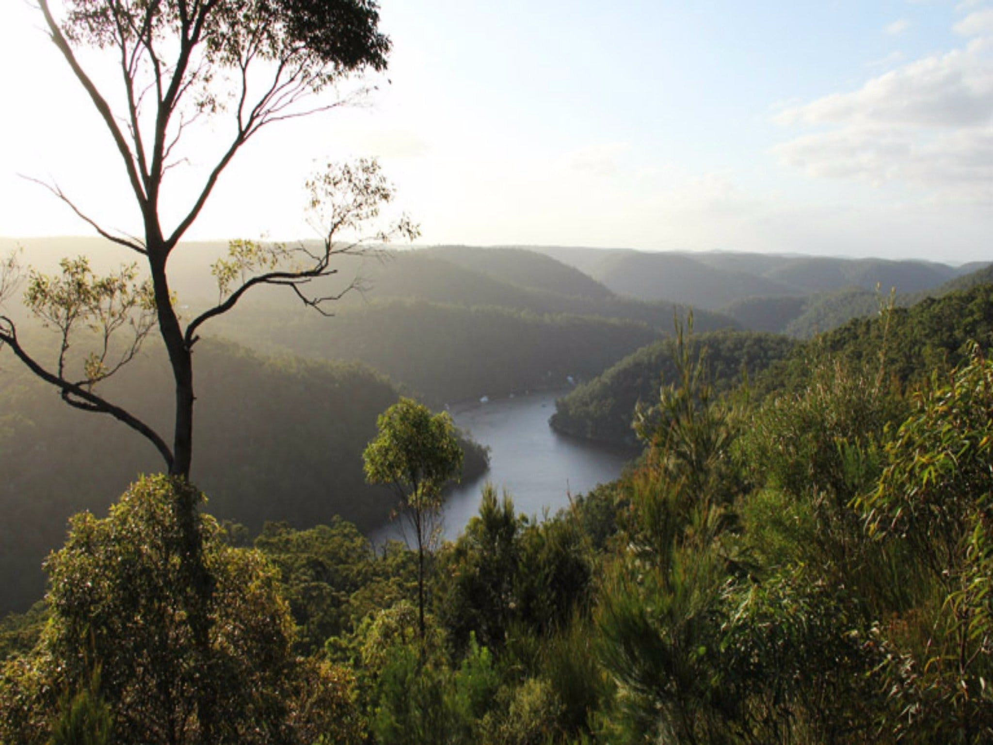 Berowra Valley National Park - Stayed