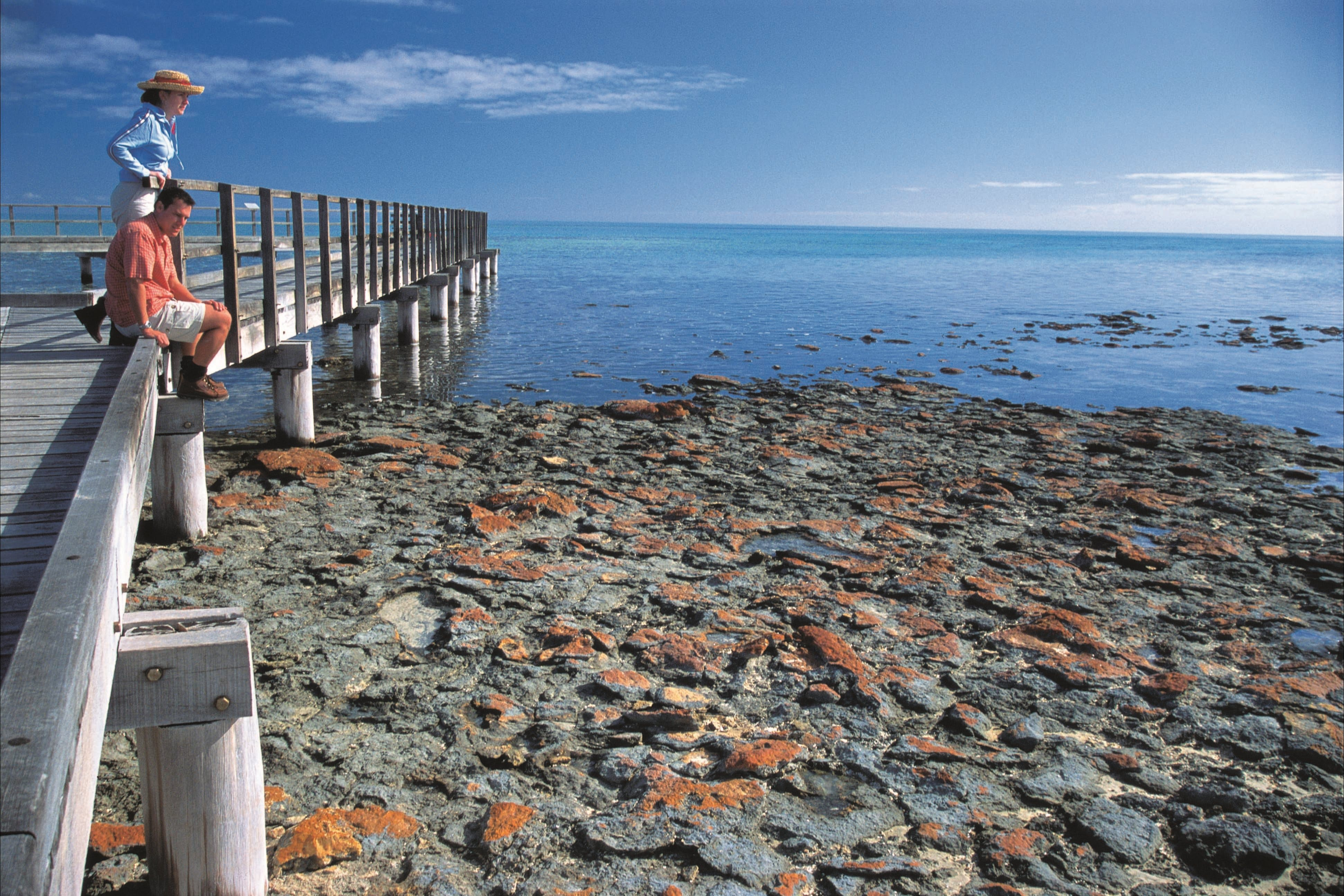 Hamelin Pool Stromatolites - Stayed