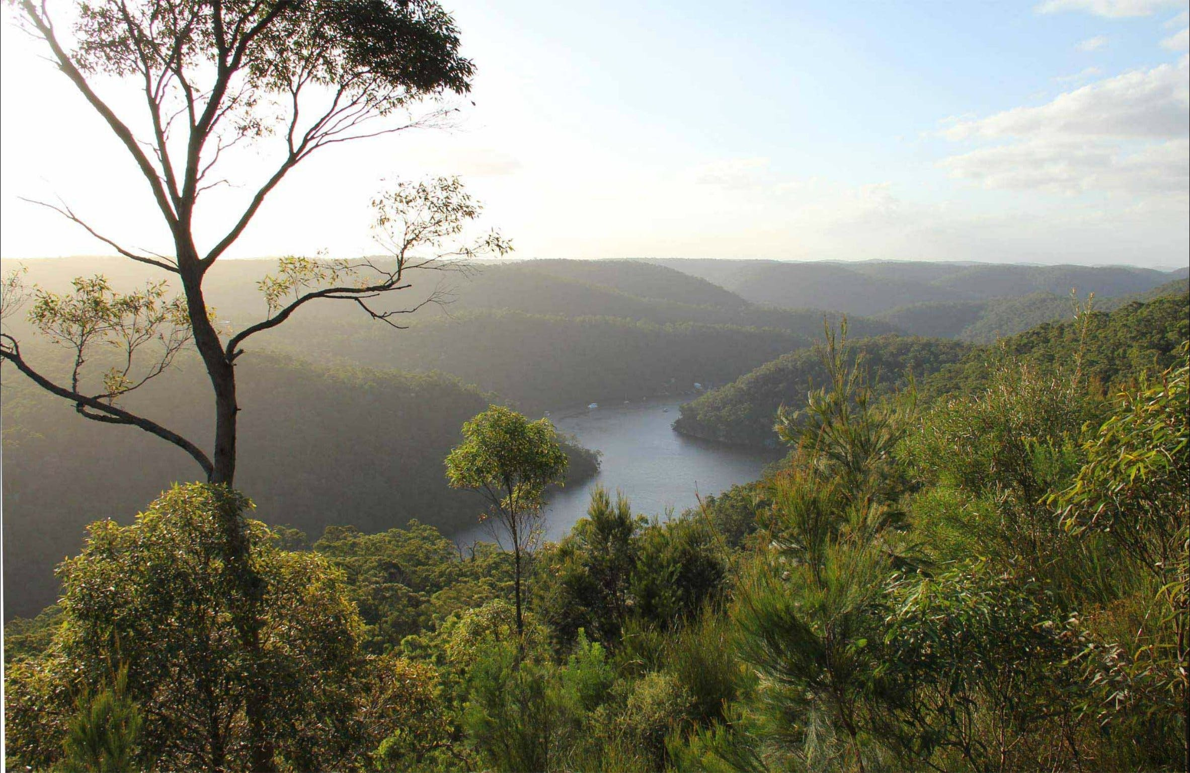 Great North walk - Berowra Valley National Park - Stayed