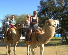 Calamunnda Camel Farm - Stayed