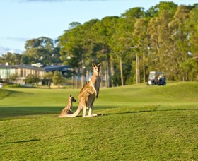 Sanctuary Cove Golf and Country Club - Stayed