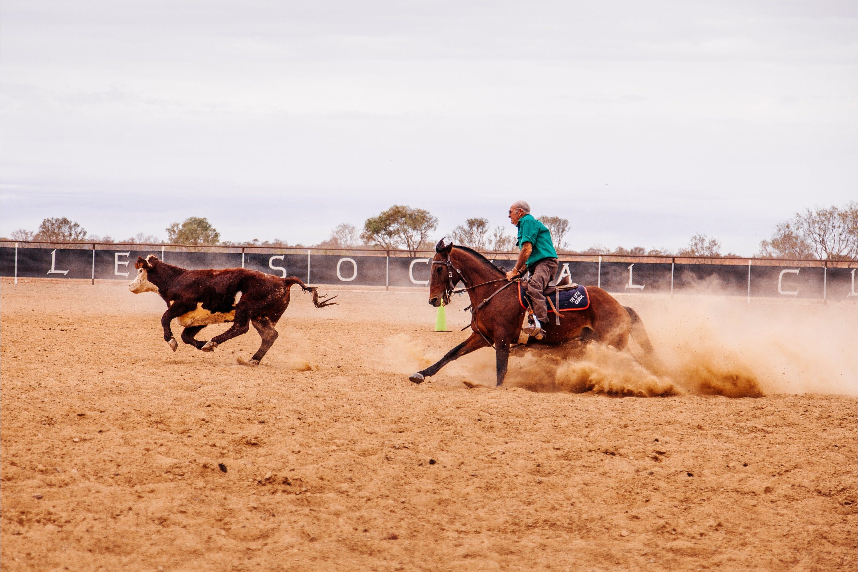 Birdsville Campdraft  Rodeo and Bronco Branding - Stayed
