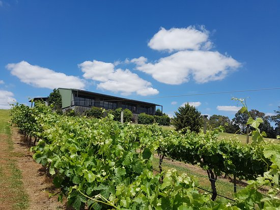 Traralgon Vineyard - Stayed