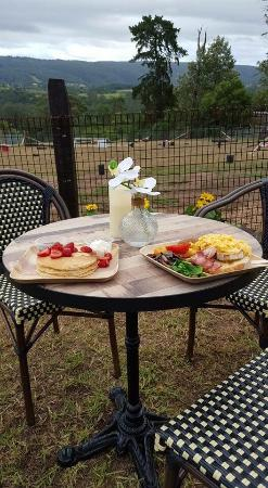 Kurrajong Bark Park and Cafe BCM - Stayed