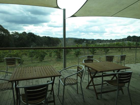 Lark Hill Winery Restaurant - Stayed